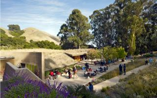 The Sharon Simpson Center at the California Shakespeare Theater, located in the San Francisco Bay Area, encourages environmental stewardship and sustainable goals by utilizing a living roof and being integrated into the natural landscape of the site.